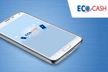 EcoCash efforts bear fruit