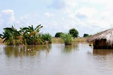 Telecoms operators donate K20.5 m towards flood victims