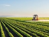 IoT set to fuel the next Green Revolution in the farming industry, finds Inmarsat