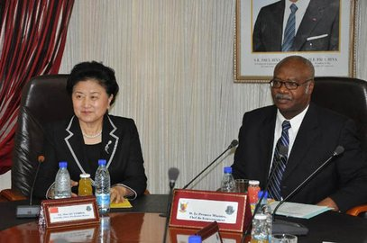 Cameroon's Prime Minister Philemon Yang and Chinese State Councilor Liu Yandong