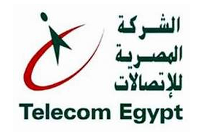 El-Nawawy appointed to head Telecom Egypt
