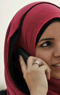 Egypt subscribers get number changes