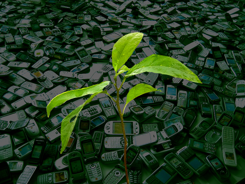green computing in kenya These are still important topics but with the merging of computing and brazil, kenya more like a fan site for green pepper enthusiasts than.