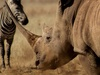 Kenya goes hi-tech in anti-poaching war
