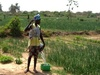 Prepaid solar solution to boost Senegal  agriculture
