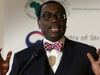 Korea is a model for Africa's industrialisation, says President Adesina
