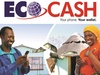 EcoCash system down for upgrade