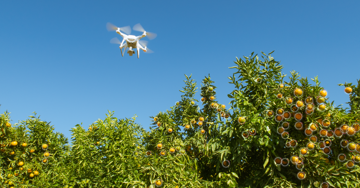 SA agricultural industry welcomes R100 million investment in Aerobotics